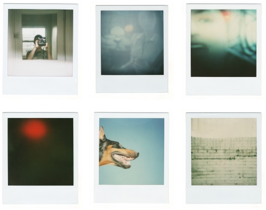 Polaroid Week   The Byczek Blog